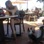 Bunny's Dog Friendly Ventura Sea Fresh